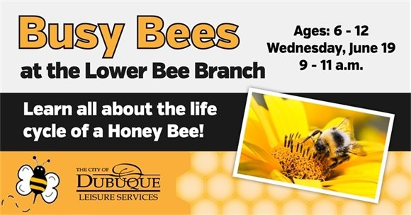 Busy Bees at the Lower Bee Branch