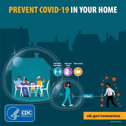 """""""Prevent COVID-19 In Your Home"""" Graphic"""