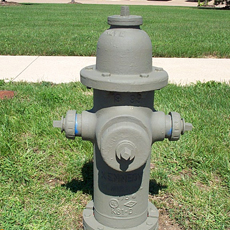 Cleaned and Primed Hydrant