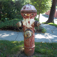 Fire Hydrant Before