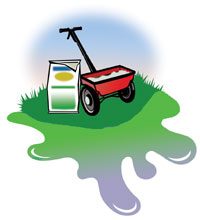Use fertilizers sparingly and not right before it rains.