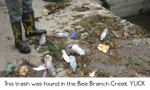 trash-in-bee-branch